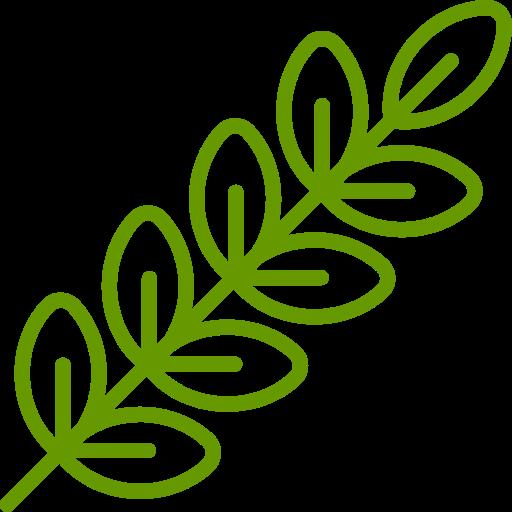 Высадка вьющихся растений